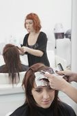 Female hairdresser dyeing a young woman's hair in salon