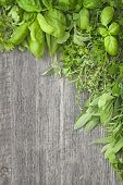foto of salvia  - Fresh herbs over a grey wooden background - JPG
