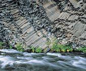 Plants and river at base of columnar basalt cliff