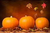 stock photo of foliage  - Three pumpkins with fall leaves with seasonal background - JPG