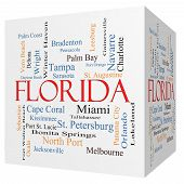 picture of florida-orange  - Florida State 3D cube Word Cloud Concept with about the 30 largest cities in the state - JPG