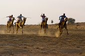 Camel Racing In Jaisalmer