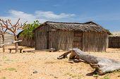 Colombia, Traditional Fishing Cottage In La Guajira