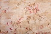 Beige Shabby Wallpaper With Floral Pattern