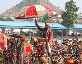 PUSHKAR, INDIA - NOVEMBER 22, 2012: Competition to decorate camels at Pushkar camel fair