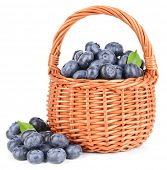 Delicious blueberries in wicker basket isolated on white