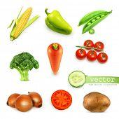 Vegetables set, vector illustration