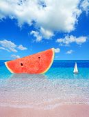Watermelon By The Shore