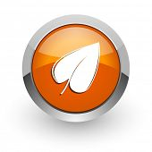 leaf orange glossy web icon