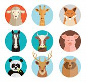 image of piglet  - vector animals avatars collection in flat style - JPG