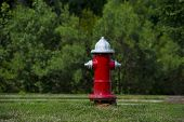 A red fire hydrant at a local park