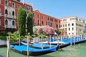 Parking Of Gondolas Near Ponte Di Rialto In Venice