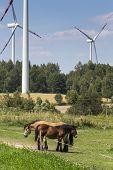 Wind Turbines In Suwalki. Poland