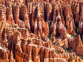 Amphitheater From Inspiration Point At Bryce Canyon National Park, Utah