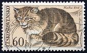 Postage Stamp Czechoslovakia 1967 Wild Cat