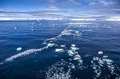 Antarctica Sea Ice Landscape