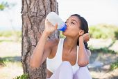 Fit woman sitting against tree drinking from water bottle on a sunny day in the countryside