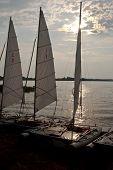 Sailing Catamarans Backlit