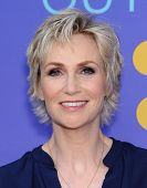 LOS ANGELES - JUN 09:  Jane Lynch arrives to the FOX's