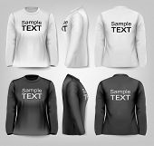 Long sleeved female t-shirts with sample text space. Vector.