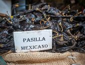 picture of pasilla chili  - Highly detailed image of Pasilla chili in Oaxaca market Mexico - JPG