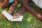 Young couple reading book on the grass on a sunny day