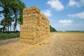 Dutch Farmland With Haystack At Harvested Wheat Field