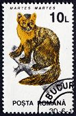 Postage Stamp Romania 1993 Pine Marten
