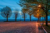 Bench under the tree illuminated by light from lamppost on small cobbled square early in the morning