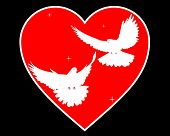 Doves In Heart