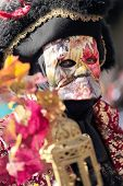Masked Lord At The Carnival Of Venice