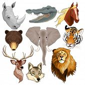 Set of animal heads. Vector isolated elements.