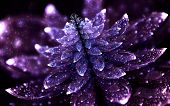 Shining Violet Crystal Flower On Black Background