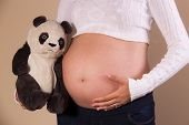 Pregnant Woman With Stuffed Animal Showing Her Belly