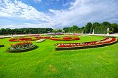 Garden At Schonbrunn Palace