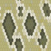Snake Skin Texture. Seamless Pattern Python. Vector