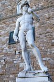 General View Of The David Statue In Florence