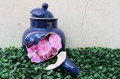 Artificial Flowers In The Broken Tea Pot