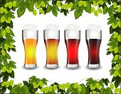 Four Kinds Of Beer In A Frame Of Green Hop
