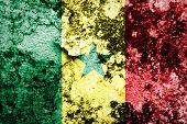 Senegal Flag on steel wall