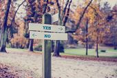 picture of yes  - Rustic wooden sign in an autumn park with the words Yes  - JPG