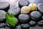 Spa Concept Of Green Leaf Calla Lily And Candles On Zen Basalt Stones With Drops, Closeup