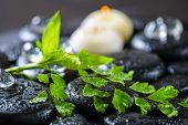 Beautiful Spa Concept Of Green Twig Fern, Bamboo, Ice And Candles On Zen Basalt Stones With Drops, C