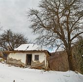 Creepy Ruined House