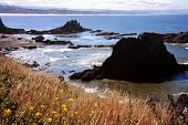 Oregon Coast - Newport