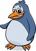 Penguin Bird Cartoon Illustration