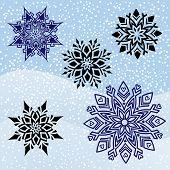 Five Unique snowflakes graphic design