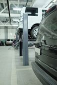 Cars on lifts in service station. Cars prepared to diagnosis and repair