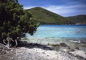 Leintser Bay
