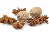 Anise And Nutmeg